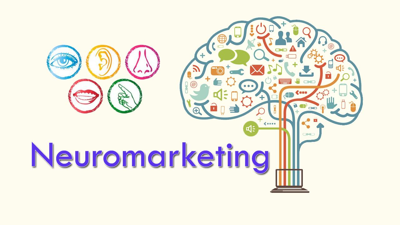 El Neuromarketing: Los viajes al centro del consumidor