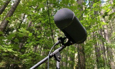 Una manera de salvar el planeta: El periodismo ambiental