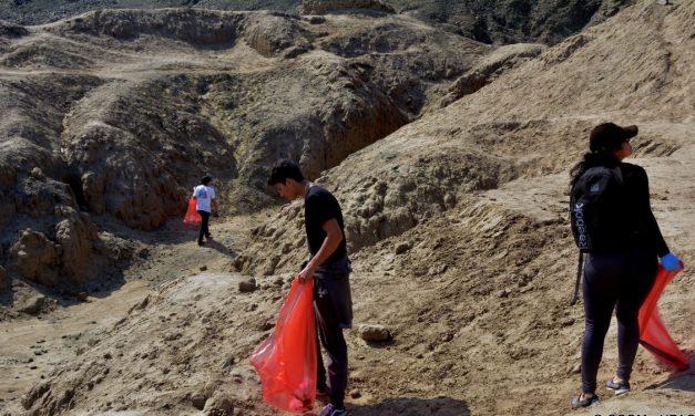 Facultad CCOM promueve la protección del ambiente